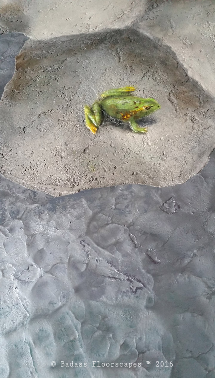 Frog enjoying the view